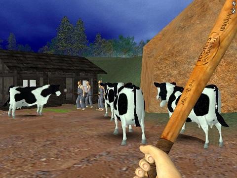 220462_02_cows_medium