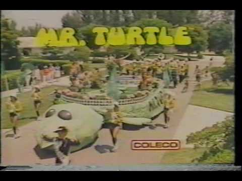 Mr. Turtle - Piscina