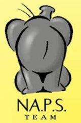 NAPS-Team_LOGOboxart_160w